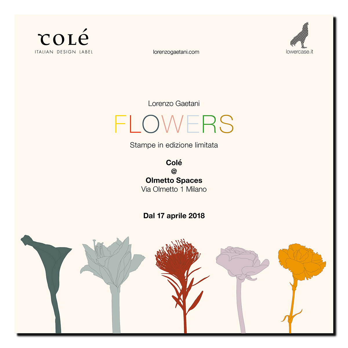 LORENZO GAETANI DESIGN FLOWERS esposizione grafica stampe