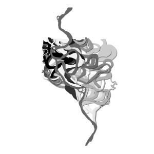 LORENZO GAETANI DESIGN Flows Fine Art Prints 2018