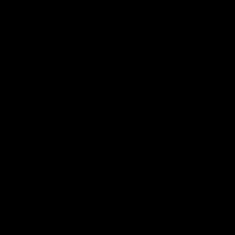 LORENZO GAETANI DESIGN San Miche Smart Oasis Logo and Brand Identity 2018